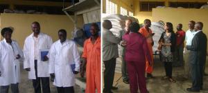 Greater Accra Poultry Farmers Association - GAPFA, slide 5, 12